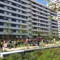 Panorama des activités : verdure et jeux, quel bonheur pour les enfants !