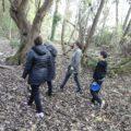 En forêt…